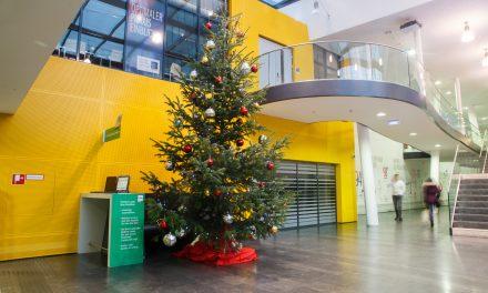 Es Weihnachtet sehr im WIFI Wien.
