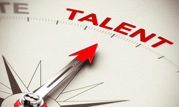 Von verborgenen Talenten zu High Potentials