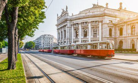 Sommer in Wien: Mit den Wiener Fremdenführer/-innen die Stadt neu entdecken