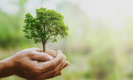 Nachhaltig Karriere machen
