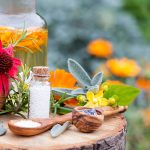 Die sanfte Medizin der Natur