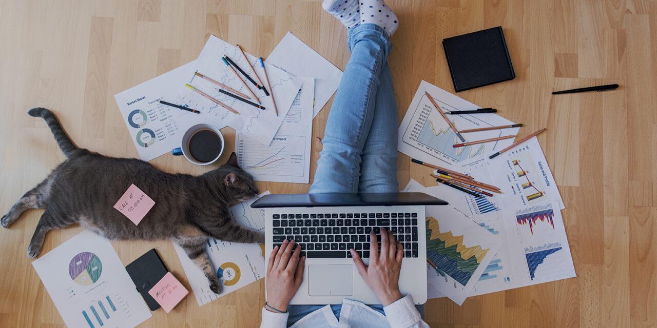 Out of Office: Gut organisiert im virtuellen Raum